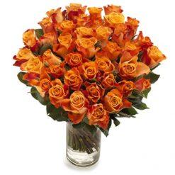 Lange oranje rozen