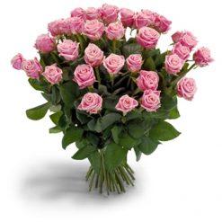 Lange roze rozen