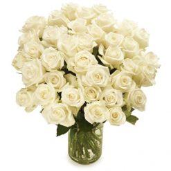 Lange witte rozen