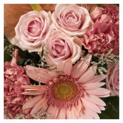 Seizoensverrassing roze
