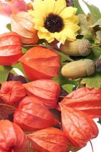 herfstbloemen en decoratie