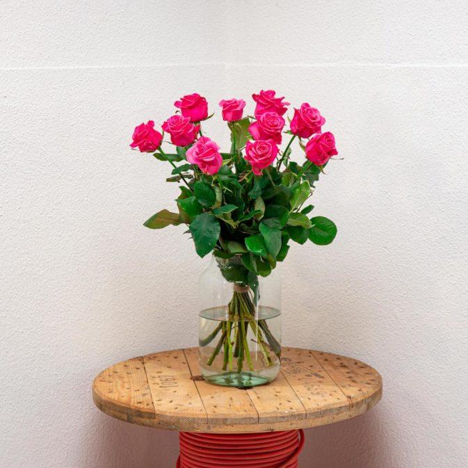 roze rozen vooraanzicht