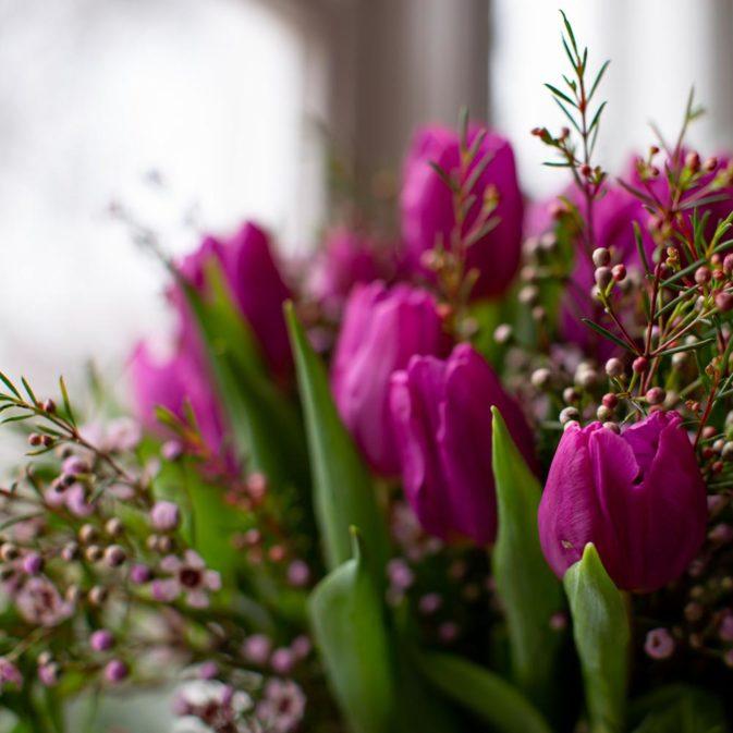 paarse tulpen in het raam close bloemen bezorgen