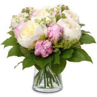 Witte en roze pioenen