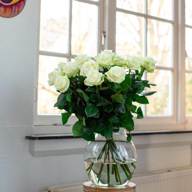 witte rozen in het raam