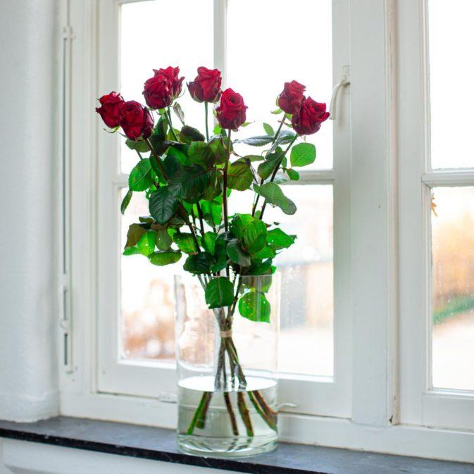 rode rozen in het raam