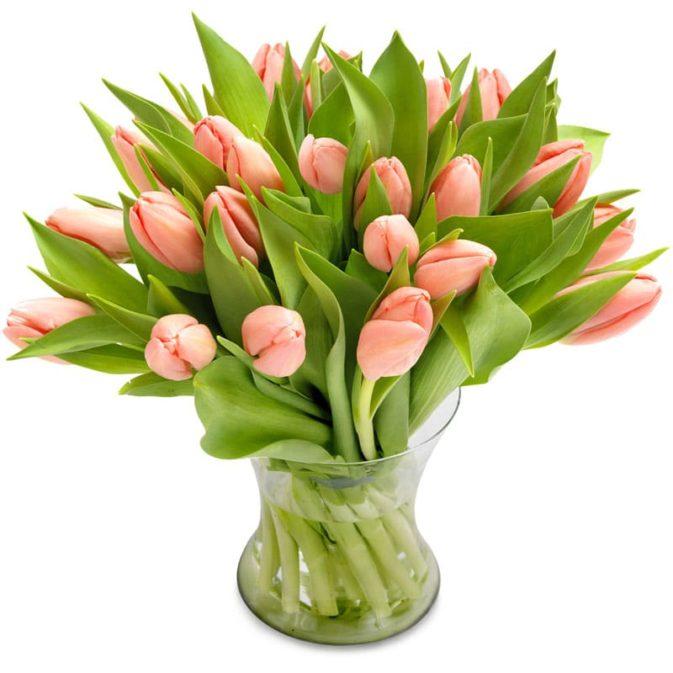 licht roze tulpen middel