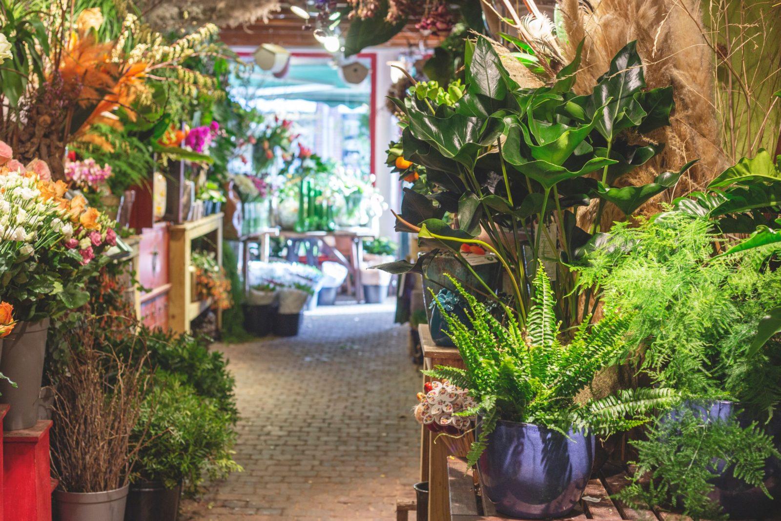 bloemen bezorgen den haag winkel