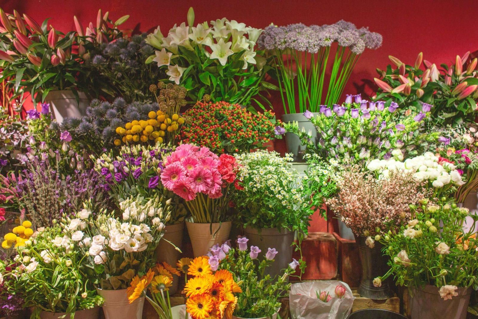 bloemen bezorgen in den haag 6